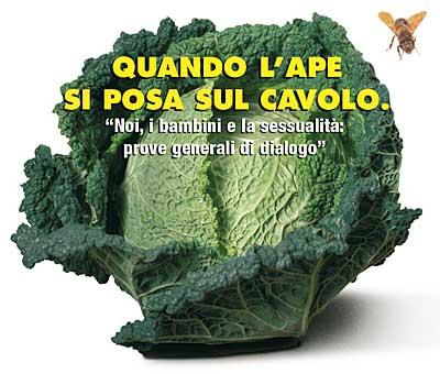 Read more about the article Corso di Educazione Sessuale